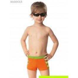 Купить шорты для мальчиков Charmante BX 041609 Exotic island
