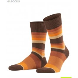 Носки Filter Stripe Men Socks Falke 13229