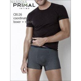 Мужской комплект Primal Cb126 Coord. Boxer + T-shirt