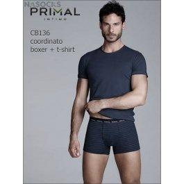 Мужской комплект Primal Cb136 Coord. Boxer + T-shirt
