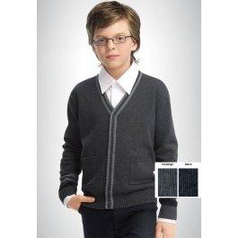 Джемпер для мальчиков на пуговичках, с карманами Pelican BKJX4022