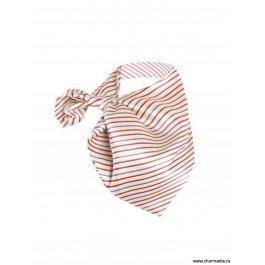 Купить платок женский Charmante FRPA365