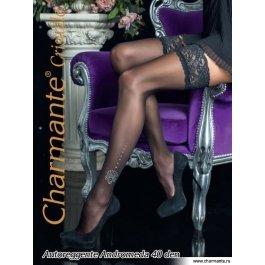 Чулки Charmante ANDROMEDA 40 со стразами